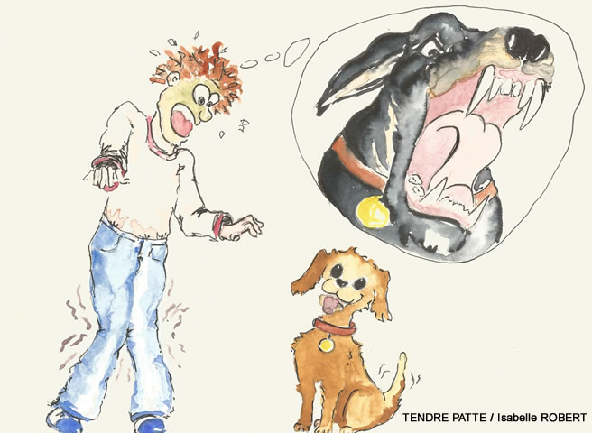 Tendre patte isabelle robert - Dessin d un chien ...